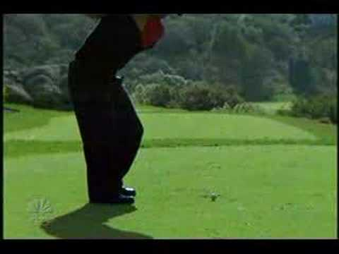 tiger woods swing vision. Swing vision.