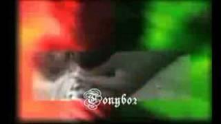 Watch Dead Prez 50 In The Clip video