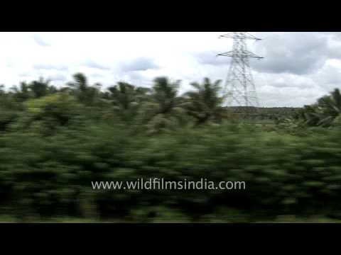 Train journey through the beautiful stretch of Kerala