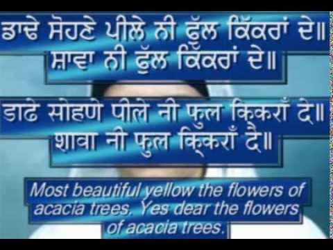 """KIKKAR FLOWERS"" (acacia tree flowers)  Children's Punjabi Song with Hindi/Punjabi Subtitles"