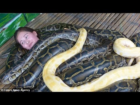 Pythons Give Massages At Filipino Zoo