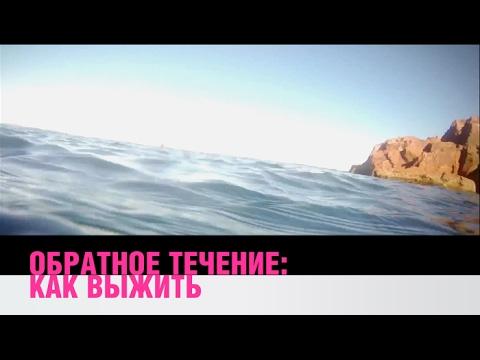 Обратное течение в океане: как выжить