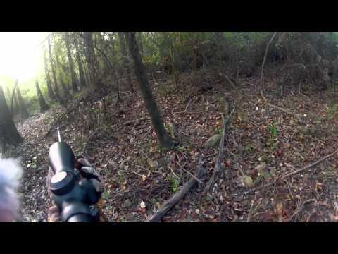 Go Pro Hero2 Hog Hunt #2