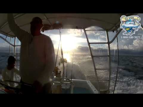 Marlin Sport Fishing Costa Rica /  Go Fish Costa Rica  (Brian Macy)