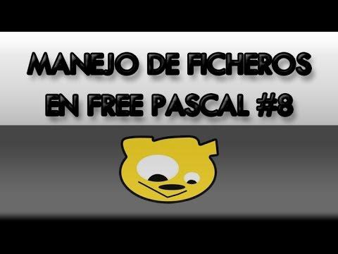 Manejo de Ficheros en Free Pascal #08: Ficheros Binarios