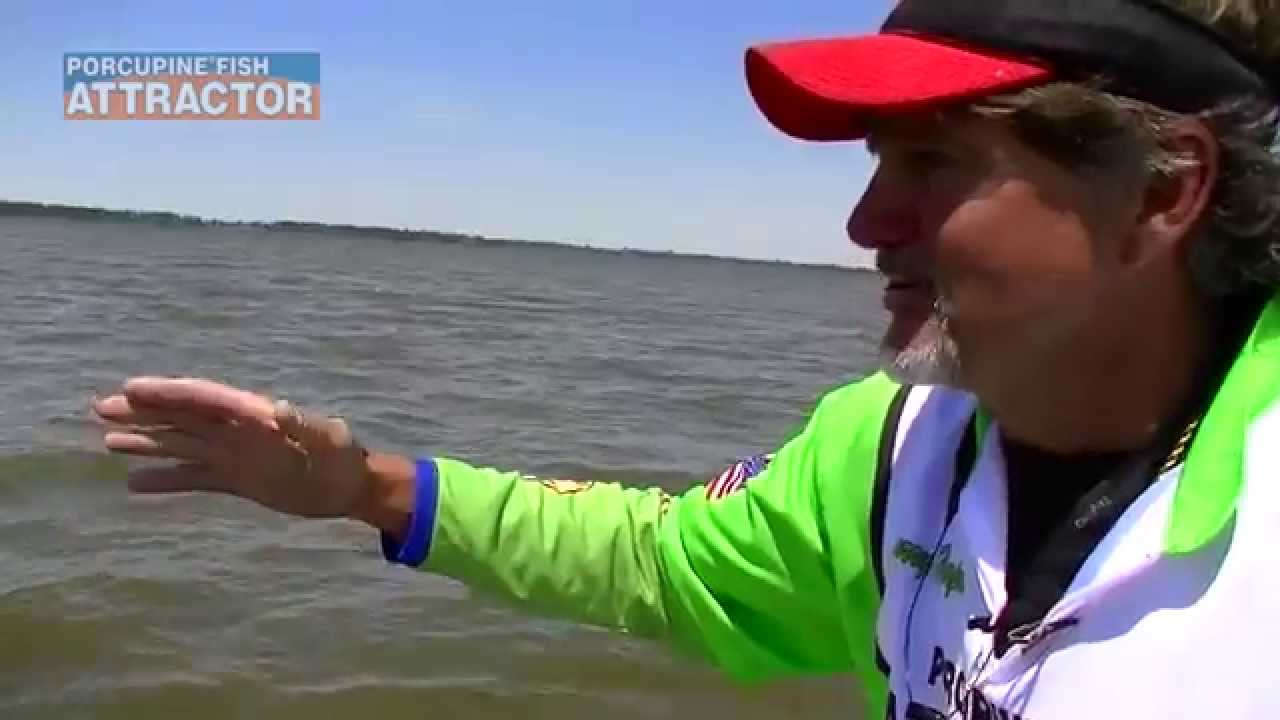 Porcupine fish attractor how to use by ronnie capps youtube for Porcupine fish attractor