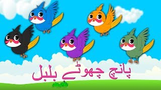 Paanch Chote Bulbul and More | پانچ چھوٹے بلبل | Urdu Rhymes Collection for Kids