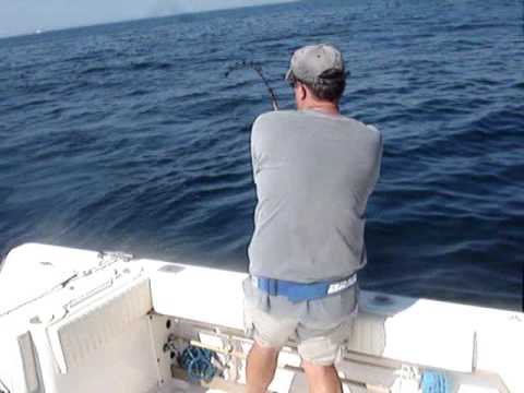 BluefinTuna Fishing  New Hampshire