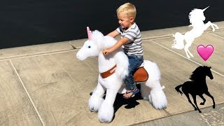 We Bought a Unicorn for the Kids!