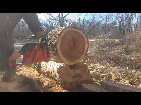 Dolmar ps 6100 vs stihl 056 super