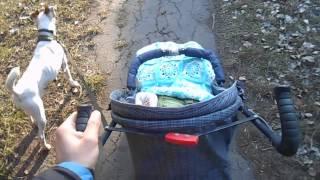 Влог/Погодите немного (прогулка с собакой и ребенком в коляске)