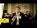 Albrecht Mayer - Hoffmeister - Concerto For Oboe And Orchestra (Music Video)