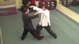 Tai Chi Two Person Set