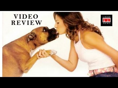 TV on the Radio - Love Dog