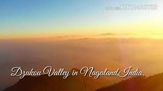 Dzukou Valley~~~ A Place Of Heaven on Earth (Nagaland, Northeast, India)