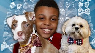 How Bow Ties Help These Pets Find Forever Homes
