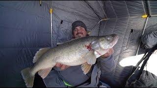 Ice Fishing For GIANT Lake Erie Walleye (2018)