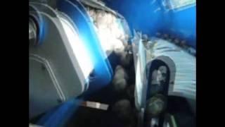 Bozuk ceviz ayıklama makinesi