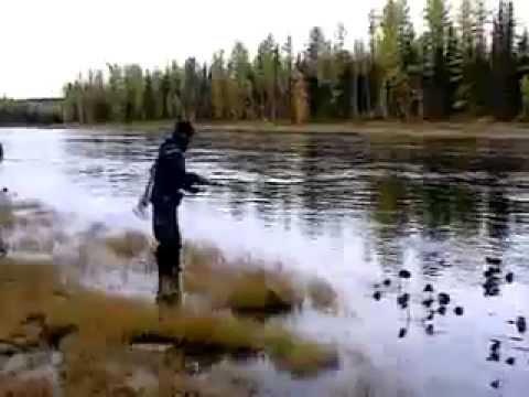 рыбалка на хариуса в красноярске весной