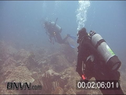7/23/2005 Sherwood Forest Coral Reef Footage, Dry Tortugas National Park