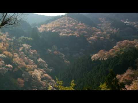 世界遺産 日本の世界遺産 Japan World Heritage HD 3/3