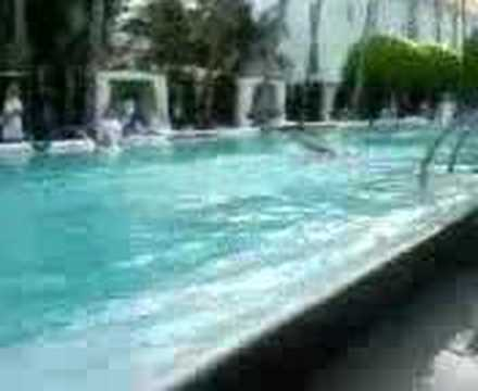 Swimming At The Delano Hotel Pool South Beach