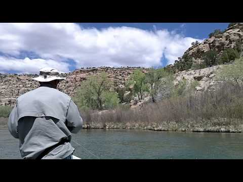 San Juan River Fly Fishing