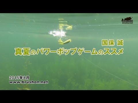 『琵琶湖 真夏のパワーポップゲームのススメ 国保 誠』