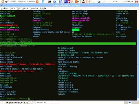 comandos basicos de linux tutorial 1
