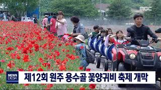 주말 다채로운 지역 축제 열려 = 토도