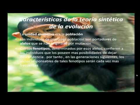 Teoria de la Evolucion Sintetica Sintetica de la Evolucion