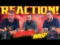 Marvel Studios' Ant-Man and the Wasp - Official Trailer REACTION!! MP3