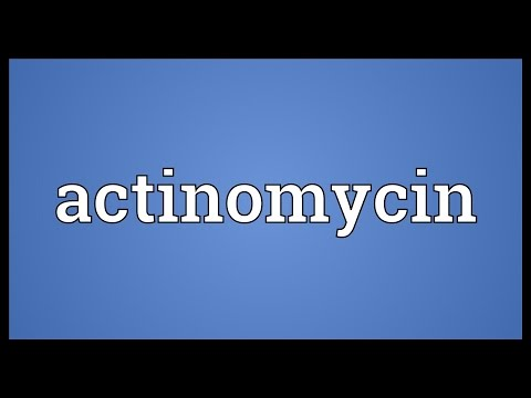 Header of Actinomycin
