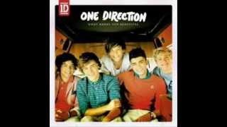 One Direction Video - One Direction Dance Megamix