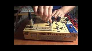 Tonoizer Y F S+  ( homemade synthesizer)