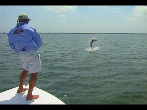 Addictive Fishing: The Tarpon - EPIC FLY FISHING battle