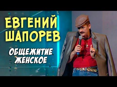Евгений Шапорев  - Общежитие женское