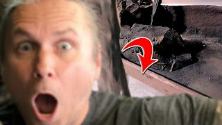 ALMOST INJURED BUILDING MY REPTILE ZOO!! | BRIAN BARCZYK