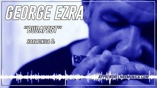 Budapest - George Ezra - Harmonica Bb - Paul Lassey