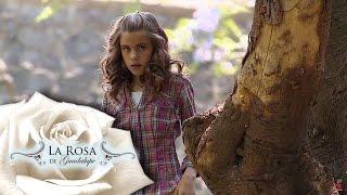 Download ¡Larisa culpa a Ofelia de robo!   Frente al árbol de las manzanas   La Rosa de Guadalupe 3Gp Mp4