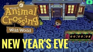 Animal Crossing: Wild World - New Year's Eve