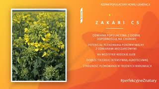 ZAKARI CS | Rzepak ozimy | Caussade Semences