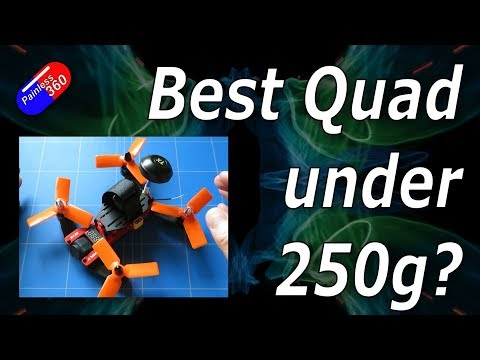 RC Reviews: ViFly R130 FPV Quadcopter under 250g