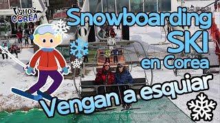 [Vamos a Corea] Disfruten del Ski en Corea