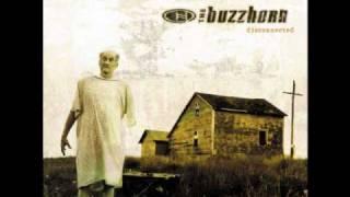 Watch Buzzhorn Ordinary video