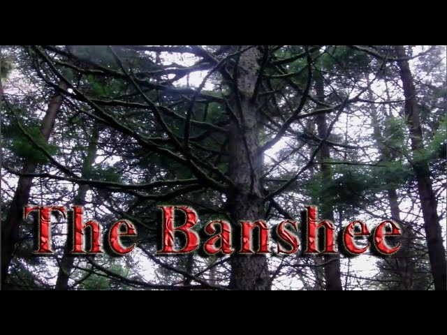 Legend of the Banshee