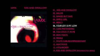 Watch Iamx Your Joy Is My Low video