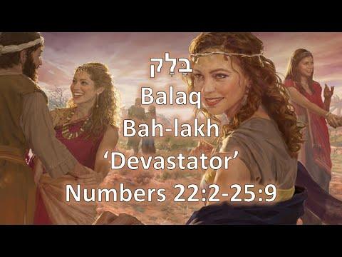 Torah Portion: Balak