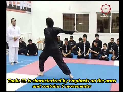 Part 2: Taolu 1 & Short Taolu Forms - Kuwait Sports Channel Martial Arts Special w/ Sifu Khader Deng