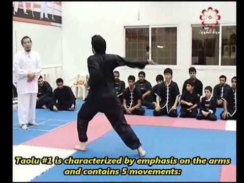Part 2: Taolu 1 & Short Taolu Forms - Kuwait Sports Channel Martial Arts Special w/ Sifu Khader Deng